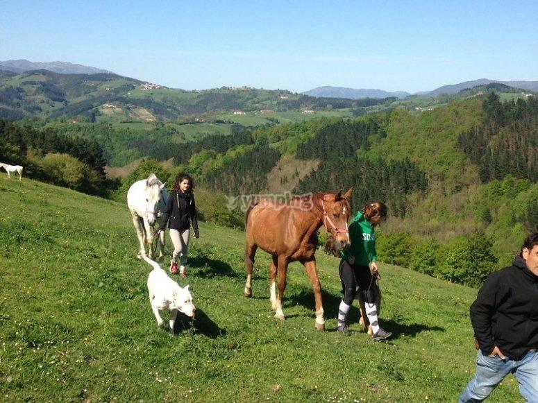 Paseo con el caballo por el campo en Zaldibia