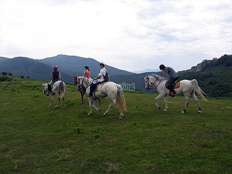 Paseos a caballo lekunberri.