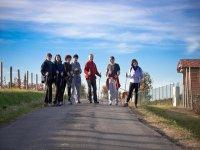 Excursiones de senderismo para grupos