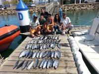 港口的扩展渔获物