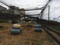 Paintball Round with 200 Balls in Jaén