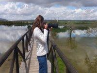 Fotografiando a las aves de la Laguna Fuente de Piedra