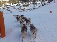 excursion en la nieve