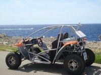 Enjoy a buggy excursion