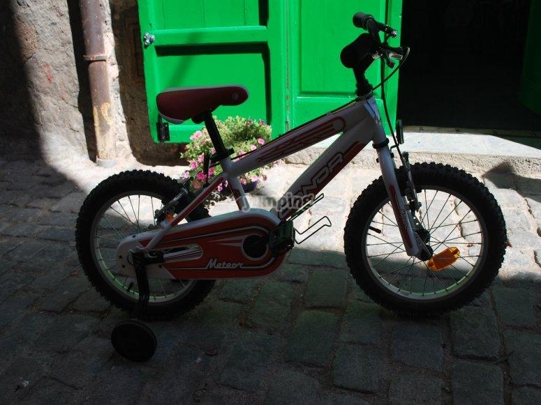 Bicicleta y ruedines