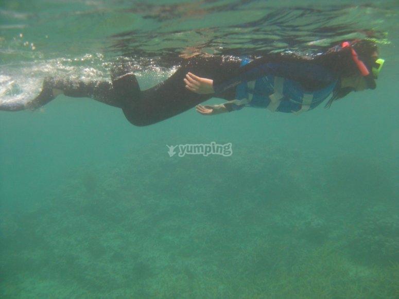 Cantabrian水域中的浮潜洗礼