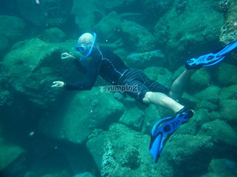 Mouro岛浮潜