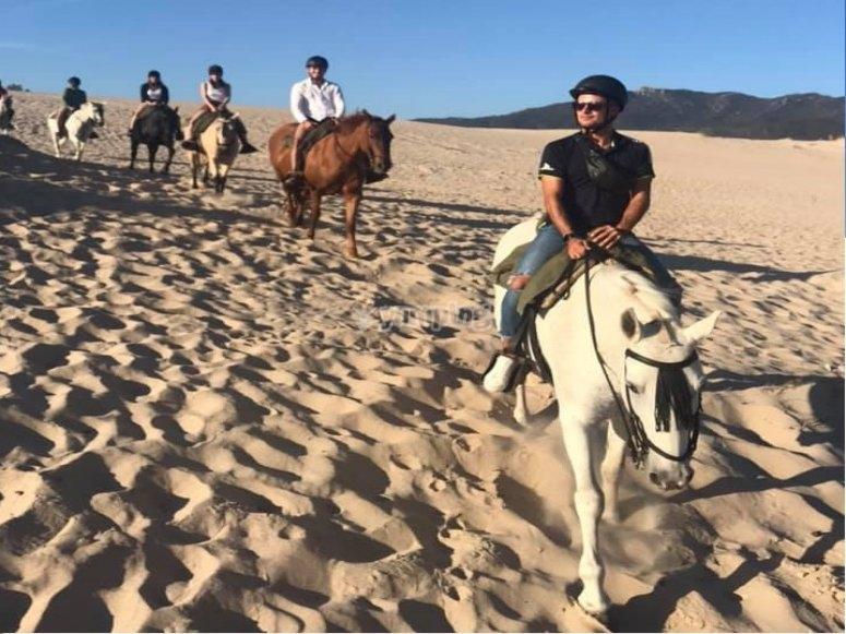与马穿过沙地