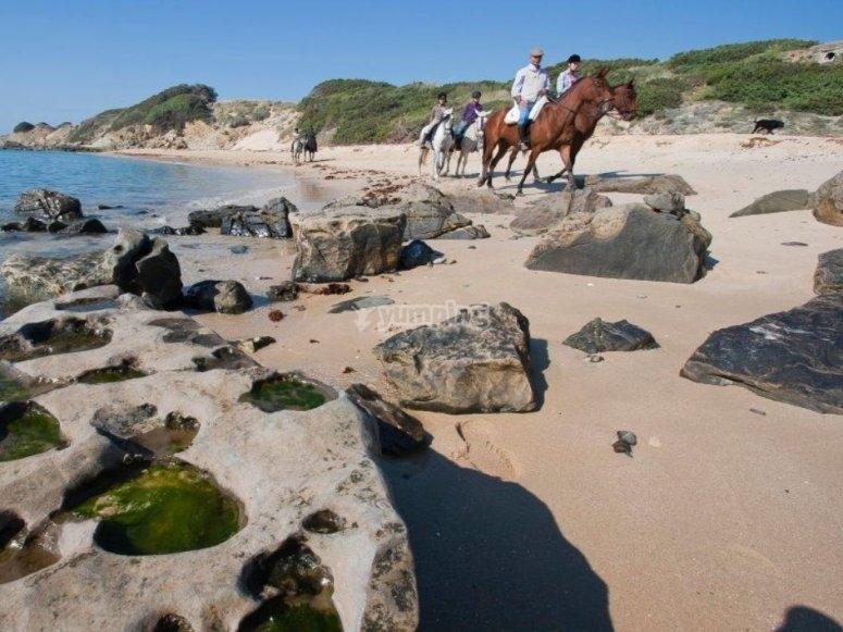 在海滩岩石间骑马