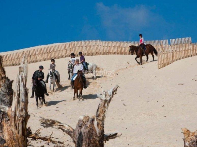 在马背上留下带栅栏的小径