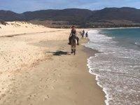 在沙滩上骑马海滩