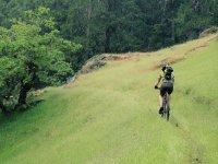 Rutas en bici de montaña en la naturaleza
