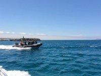 Salidas de buceo en Fuerteventura