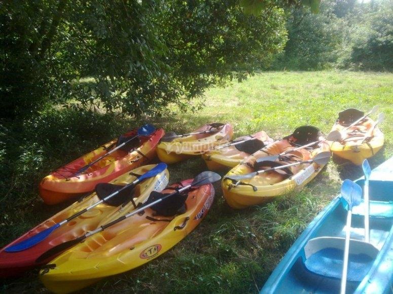 Kayaks antes de empezar