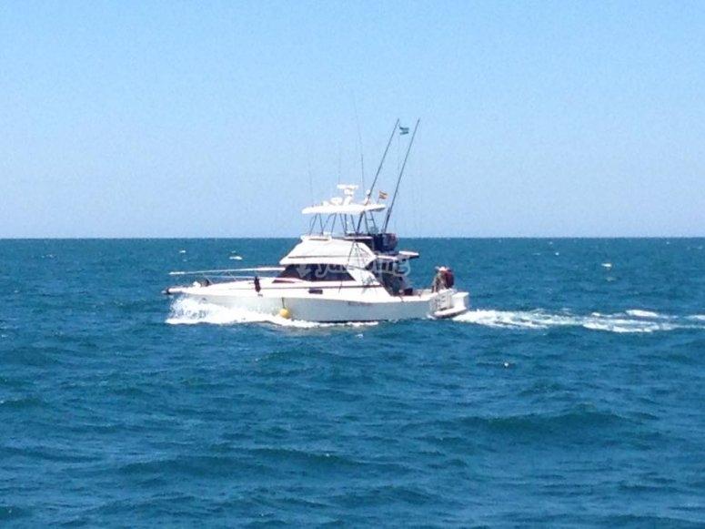 Charter en el agua