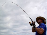 Lanza la caña y... ¡A pescar!