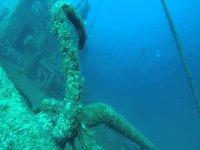 Fondos marinos irresistibles
