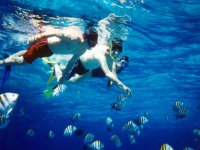 Gran jornada de Snorkel