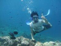 buceo en Fuerteventura