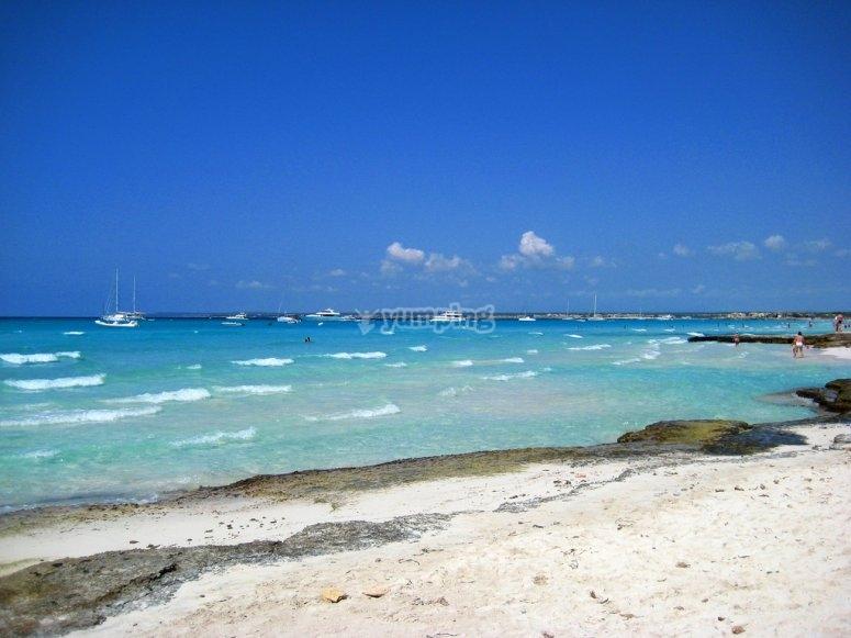 Playa des trenc