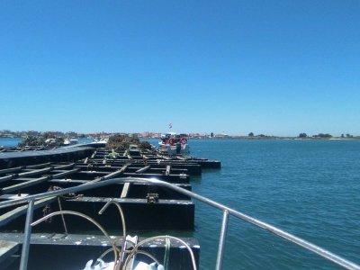 Excursiones Marítimas Isleñas Paseos en Barco