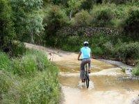 cyclist traveling a sandy path