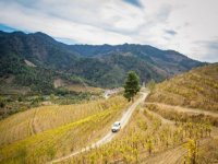 touring the vineyards in 4x4
