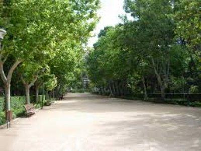 骑自行车前往Meridiano公园