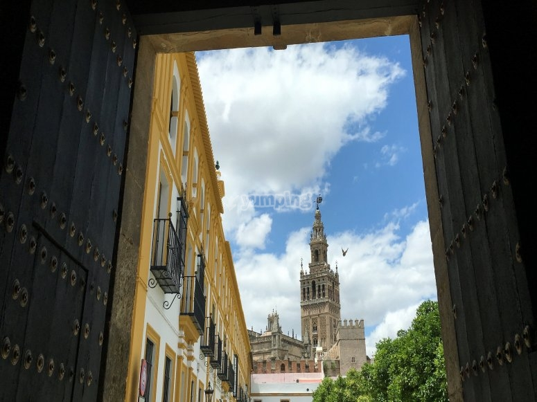 Sevilla's Giralda from a hidden spot