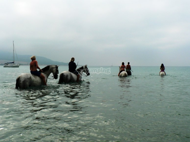 Horse riding trail in Andalusia