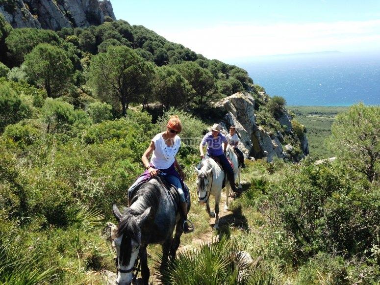 Horse riding holidays in Tarifa