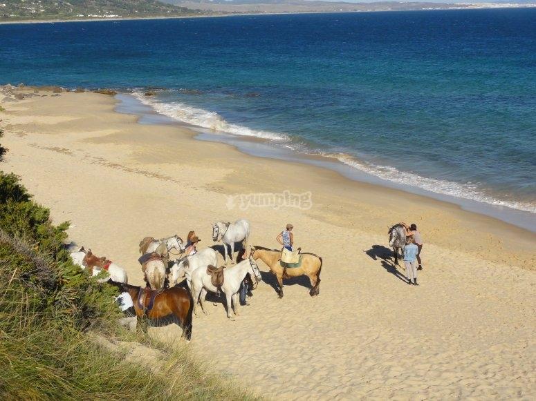 Punta Paloma, horse riding trail