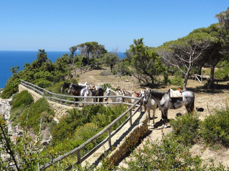 Costa de la Luz, Andalusia