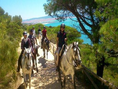 在Costa de la Luz骑马一周