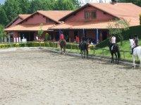 Clases con caballos de escuela