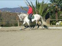 Montando a caballo en pista exterior