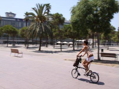 在巴塞罗那租用自行车1天