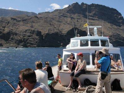 在Playa de Santiago观察鲸类,4小时