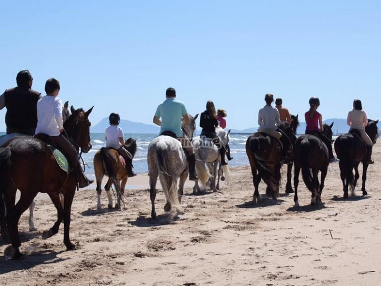 Riding a horse in the beach of Gandia o Marjal´s
