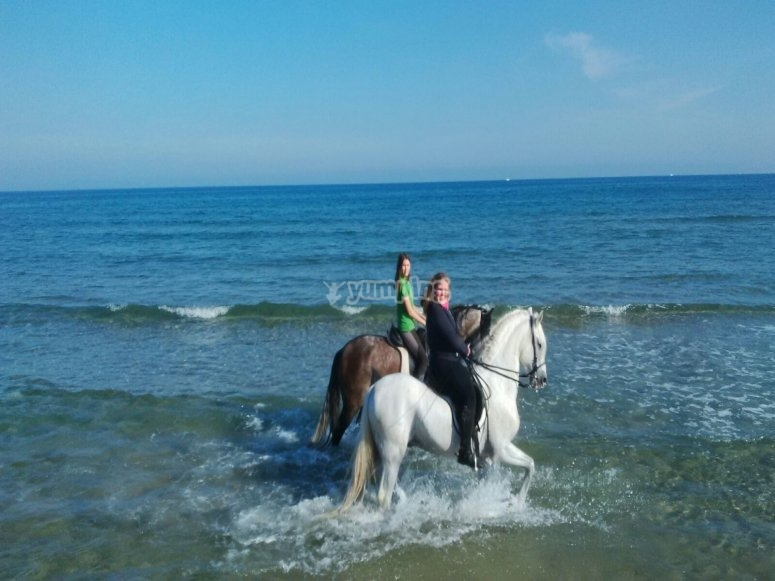 By horse by the beach