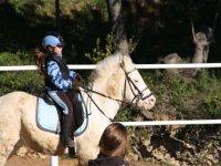 Caricato in un pony