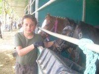 Nino与小马