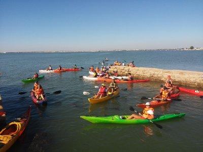 Kayaking course in Cádiz 3h