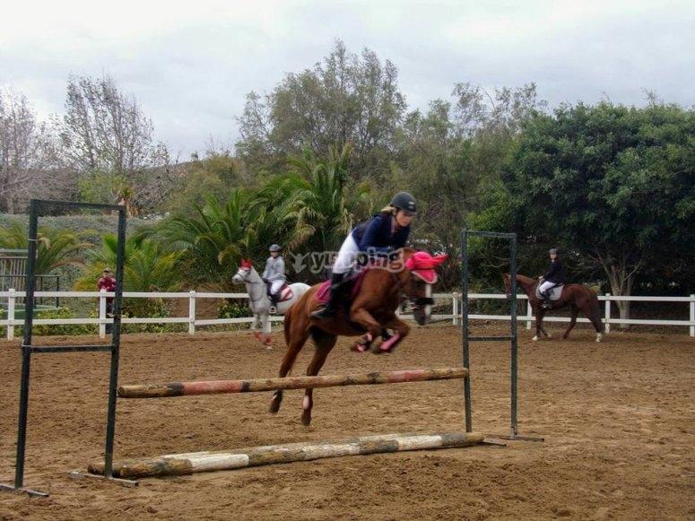 Sesion de salto a caballo