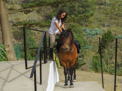 Horse riding lessons in Canarias