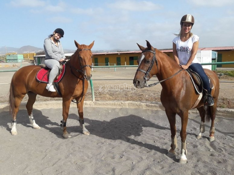 Riders on the horse riding class