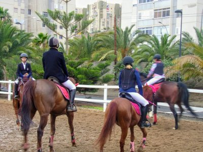 Private Horse Riding Class Telde 45 Minutes
