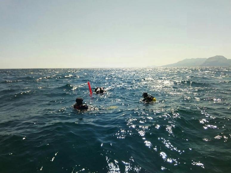 Experiencia de buceo en Santoña