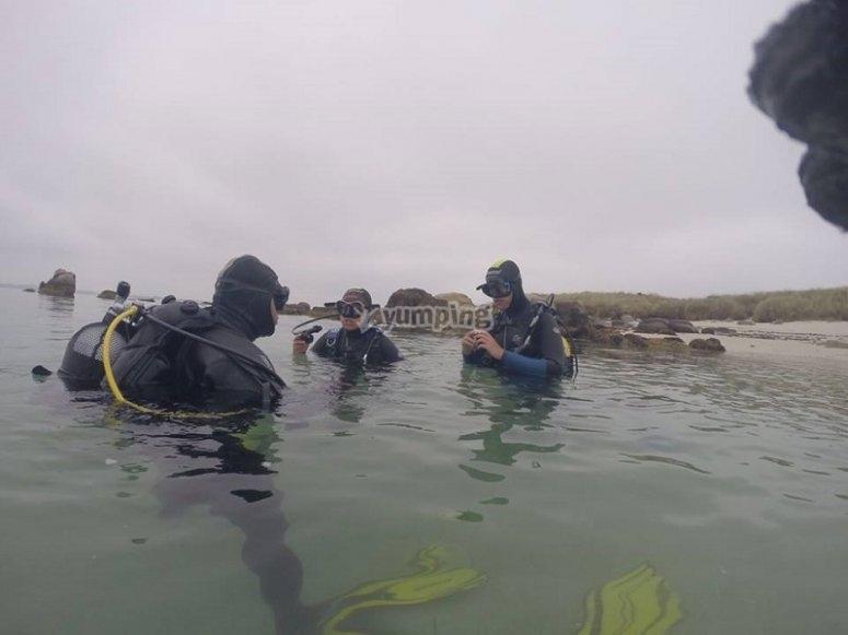Comenzando la inmersión