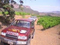 With vehicles between crops